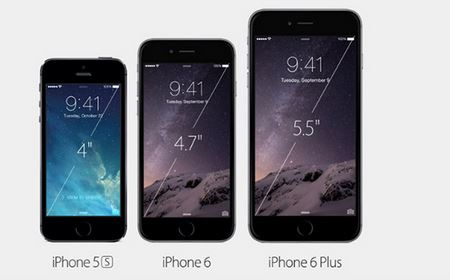 iPhone 6 Plus Details
